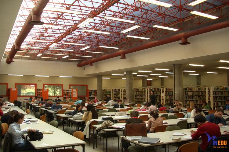 Các chính sách học bổng tạo điều kiện cho sinh viên yên tâm học tập