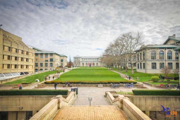 Chuyên ngành đào tạo tại Carnegie Mellon tạo điều kiện để sinh viên có thể nghiên cứu
