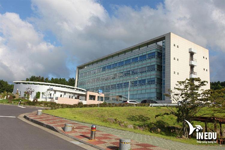 Cơ hội việc làm sau khi tốt nghiệp trường quốc gia Jeju như thế nào?