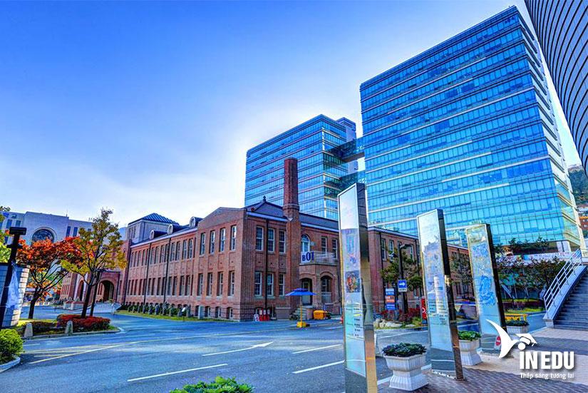 Đại học Dong A - Trường tư thục top đầu tại Hàn Quốc