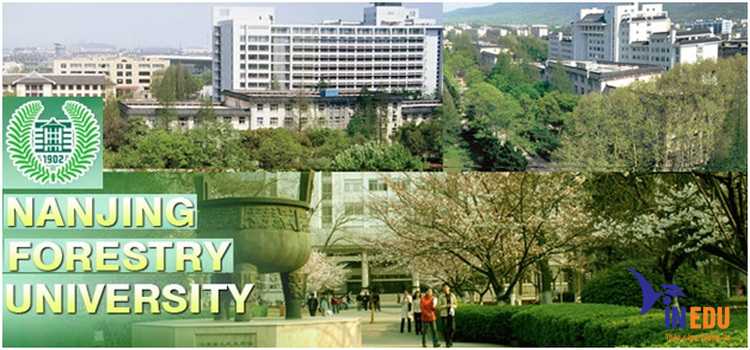 Trường đại học Lâm Nghiệp Nam Kinh