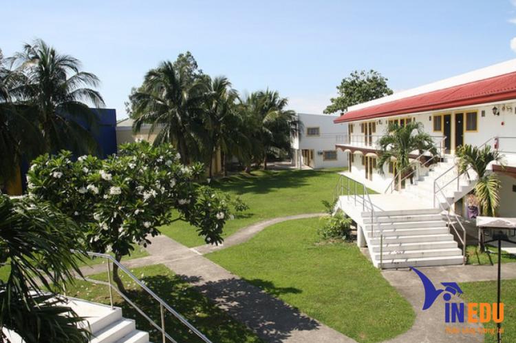 Khuôn viên trường Anh ngữ OKEA
