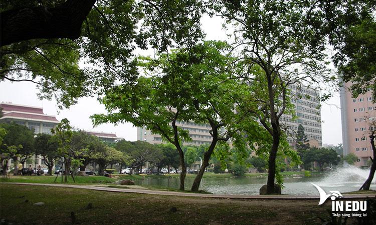 Khuôn viên rộng lớn của trường Đại học Đài Trung