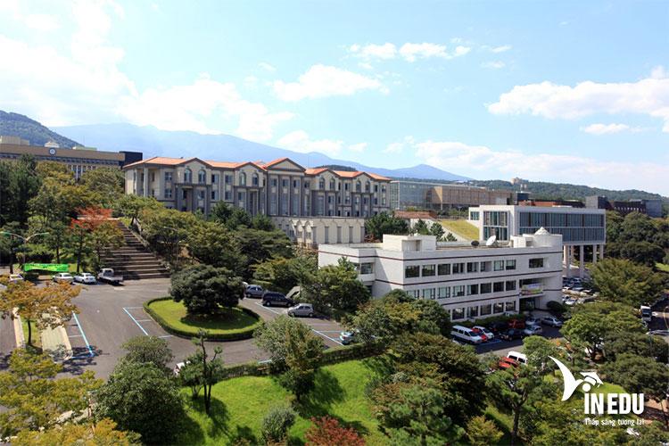 Khuôn viên rộng lớn và thoáng mát của trường đại học Jeju