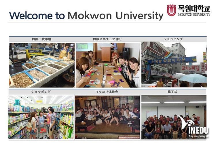 Lựa chọn đại học Mokwon khi du học Hàn Quốc là quyết định của rất nhiều bạn trẻ