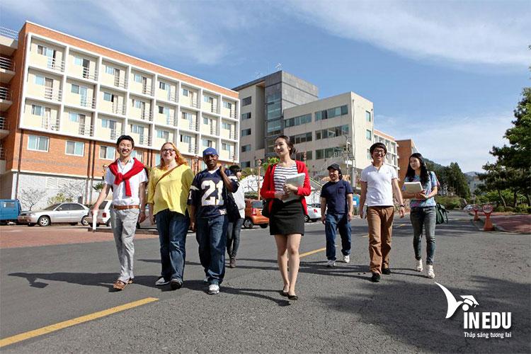Nhiều sinh viên quốc tế mong muốn theo học các chuyên ngành thế mạnh của trường