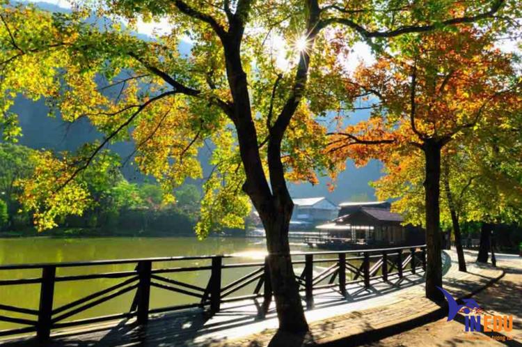 Mùa thu tại Đài Loan
