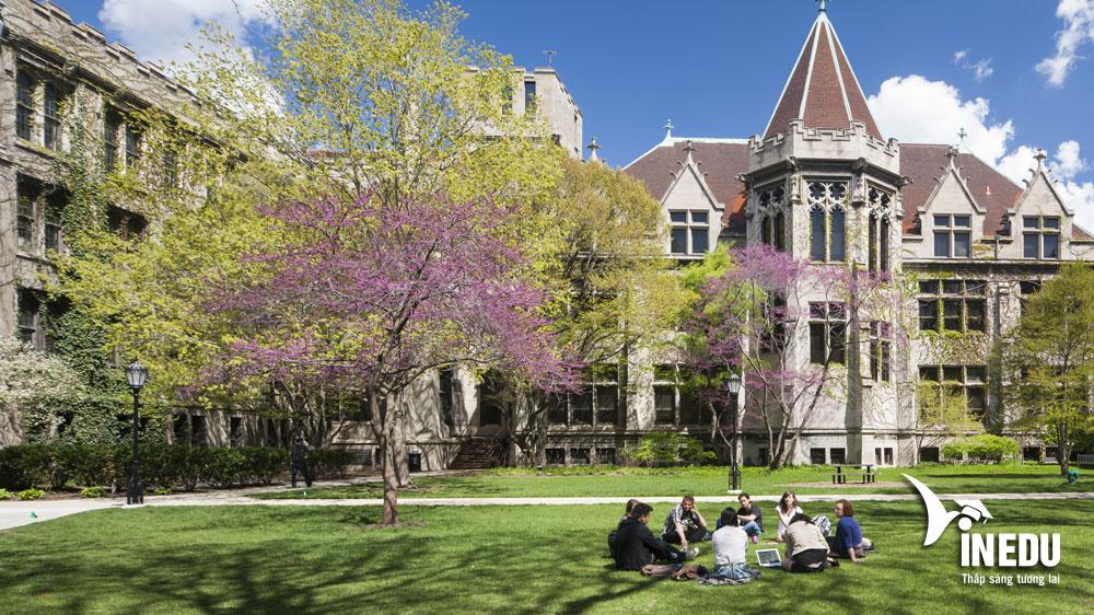 Đại học Chicago Mỹ