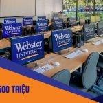 Học bổng du học Mỹ - Đại học Webster