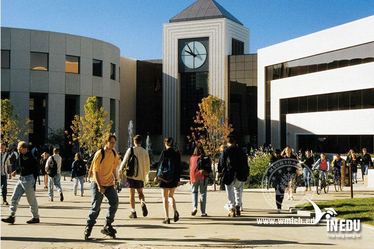 Kinh doanh là một trong những thế mạnh đào tạo của WMU