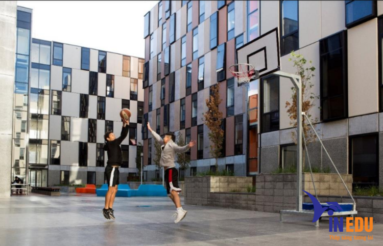 Sinh viên tham gia hoạt động thể dục thể thao