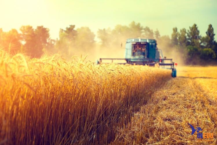 """Khoa học môi trường và nông nghiệp ngành """"khát"""" nhân lực"""