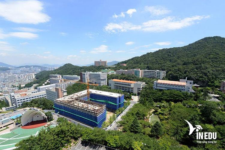 Trường đại học Dongeui nằm ở thành phố cảng Busan, một trung tâm văn hóa và chính trị lớn của Hàn Quốc