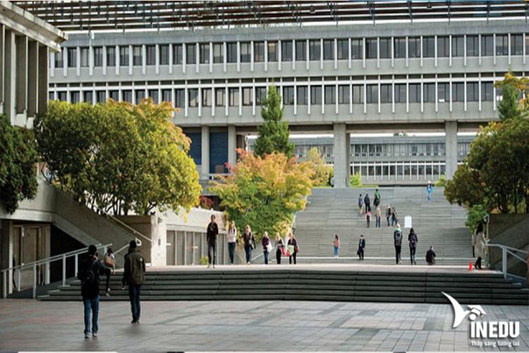 Có nên chọn FIC làm bước chuyển tiếp vào SFU?