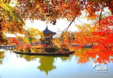 Có nên du học Hàn Quốc không?
