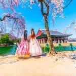 Du học Hàn Quốc tự túc