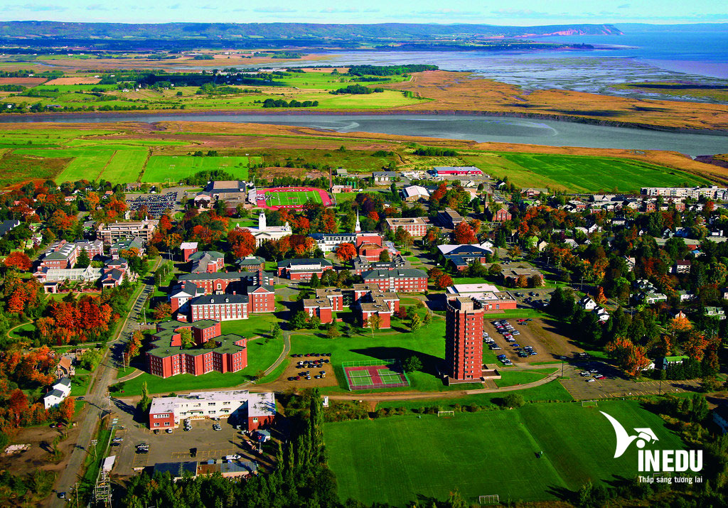 3 trường đại học đang tuyển sinh tại bang Nova Scotia