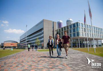 Du học Hà Lan không chứng minh tài chính, tỷ lệ đậu visa 99%