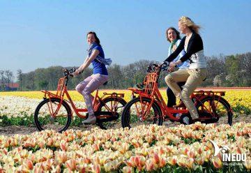 Hướng dẫn làm hồ sơ làm visa du học Hà Lan không chứng minh tài chính