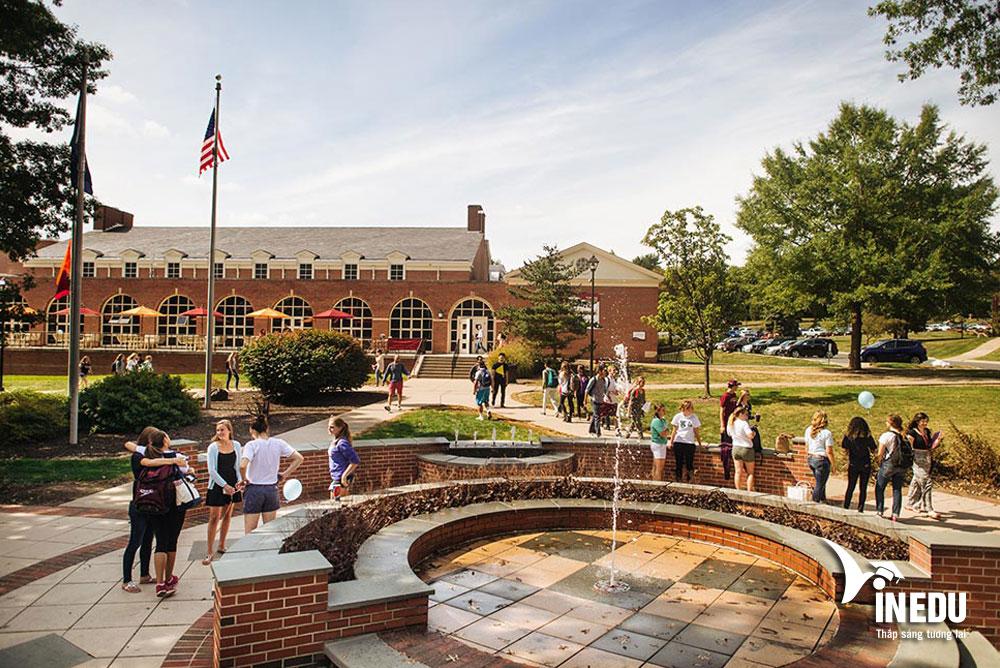 Học bổng du học Mỹ lên tới 100% học phí từ Susquehanna University