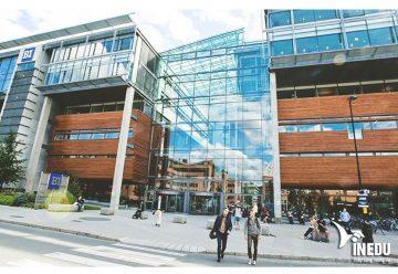 Học chuyển tiếp từ trường Stamford Thái Lan đến trường SolBridge Hàn Quốc