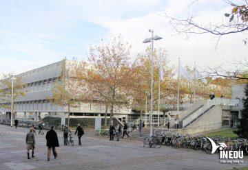 Du học Hà Lan trường công lập hàng đầu – Trường Tilburg University