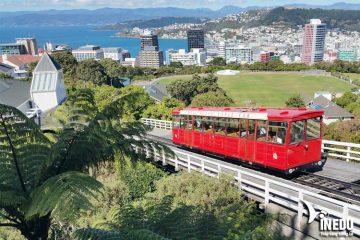 Cẩm nang ngành Marketing khi du học New Zealand