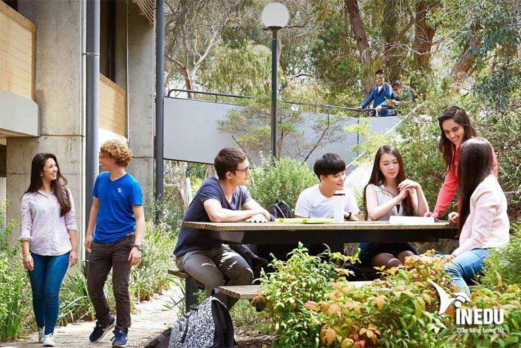 Hawthorn-Melbourne – Trường tiếng Anh toàn cầu hàng đầu tại Úc