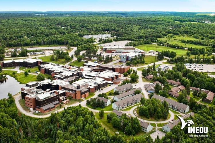 Nipissing University – Du học Canada với học bổng triển vọng