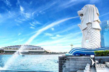 vinedu-mach-ban-cam-nang-du-hoc-singapore-sau-khi-dau-visa