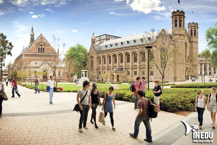 Du học Úc hệ thạc sĩ đại học Adelaide bằng con đường dự bị