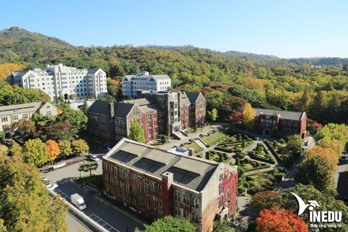 Tuyển sinh khóa tiếng Hàn trường đại học Yonsei - Được ưu tiên visa