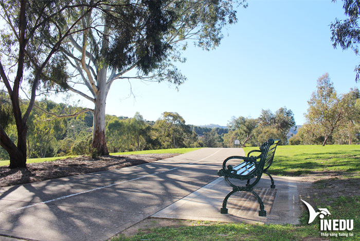 Cơ hội định cư – du học của sinh viên tại thành phố Adelaide, Úc