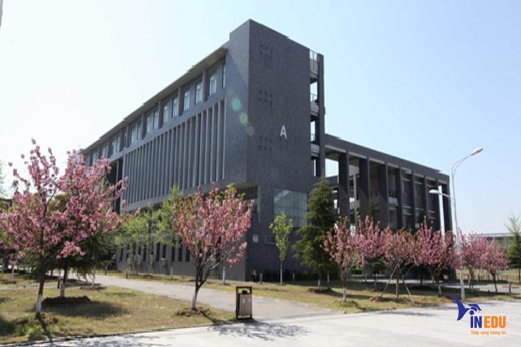 Đại học Y dược Trung Quốc trường trọng điểm ngành dược