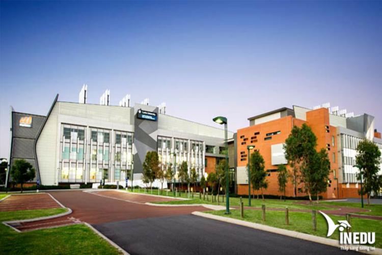 Cơ sở vật chất tại Curtin - Úc