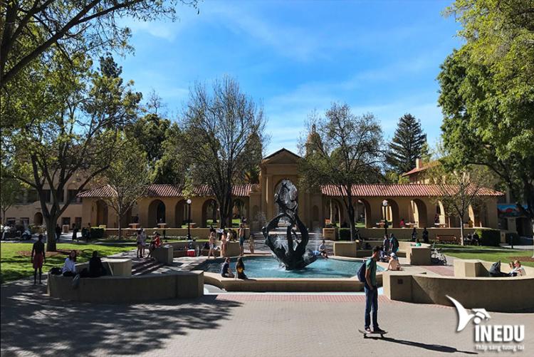 Đặc điểm nổi bật khiến trường Stanford trở nên được thu hút