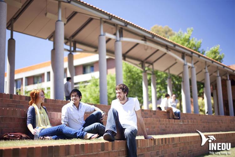 Điều kiện nhập học Trường Curtin Úc