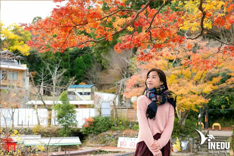 Những lưu ý khi theo học tại Đại học Osaka