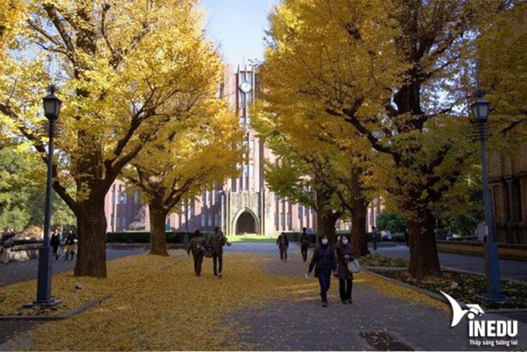 Vì sao nên học tại Đại học Tokyo ?