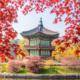Du học Hàn Quốc kỳ thi Topik