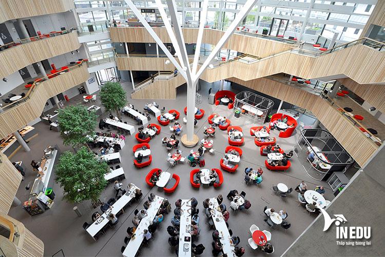 Trường Bournemouth có hệ thống cơ sở vật chất hiện đại