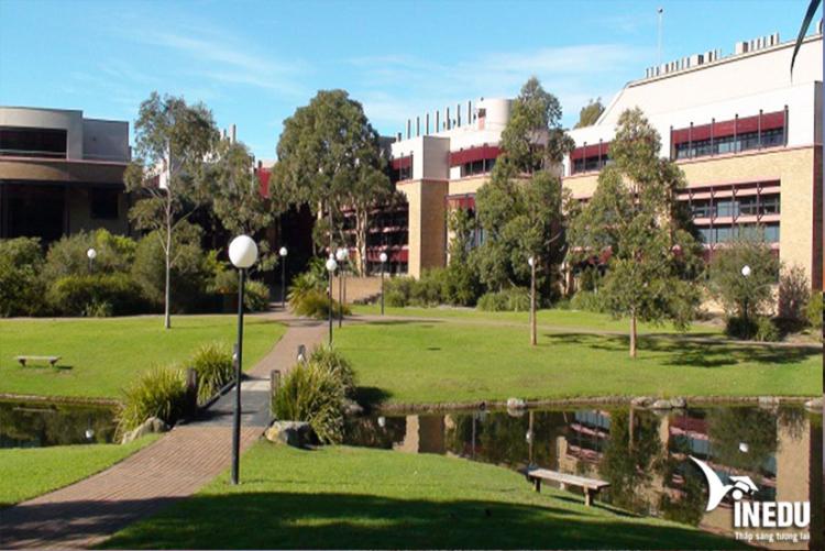 Những đặc điểm nổi bật tại trường Đại Học Wollongong