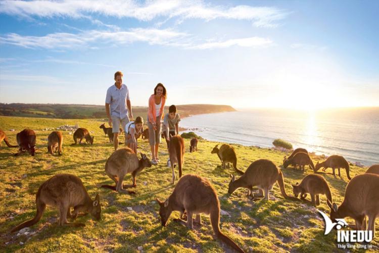Những lưu ý khi xin Visa Úc