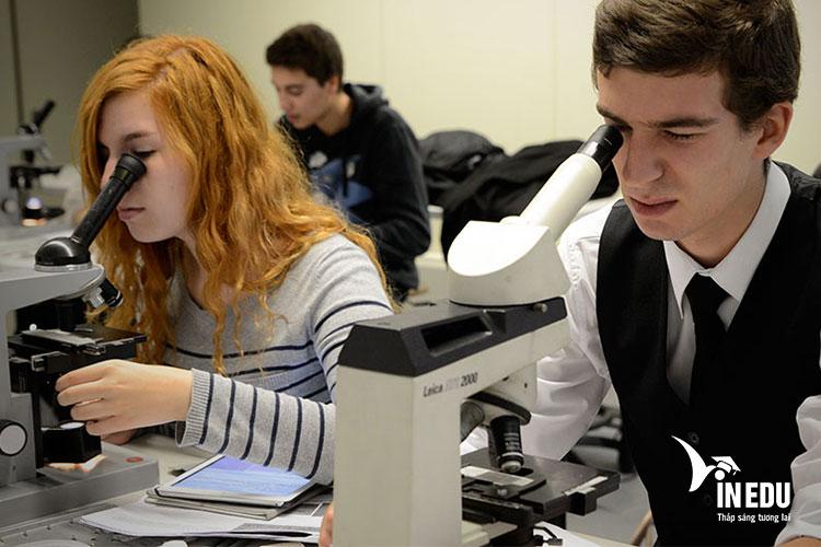 Các chương trình học và nghiên cứu sau Đại học