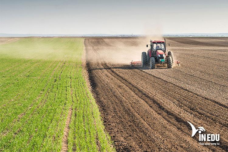 Các hoạt động sản xuất nông nghiệp tại đảo Síp