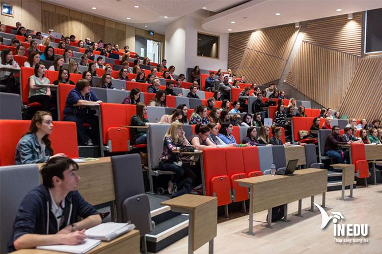 Chương trình học tập tại Ulster dành cho sinh viên quốc tế