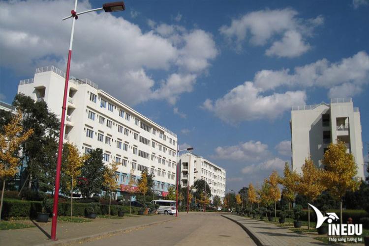 Chương trình đào tạo tại Đại học Vân Nam