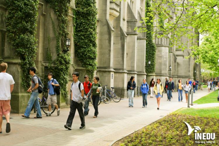 Lời khuyên khi du học phổ thông tại Hà Lan