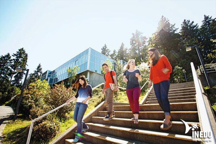 Cơ hội việc làm cho sinh viên Vancouver Island University