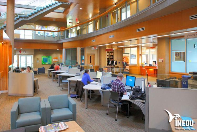 Những lý do khiến Vancouver Island University trở nên thu hút